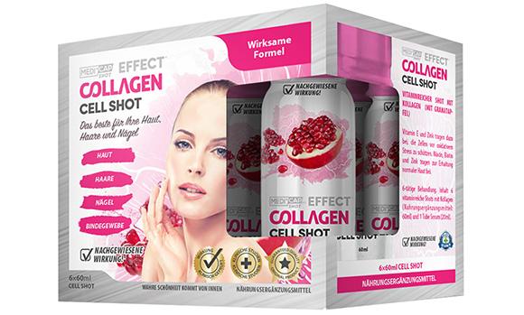 6x_Collagen_3D