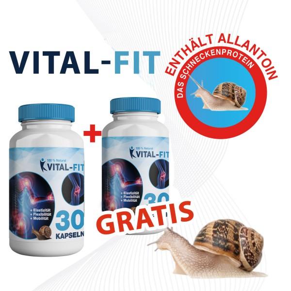 Vital-Fit 1+1 GRATIS- Mit Allantoin-Schneckenprotein